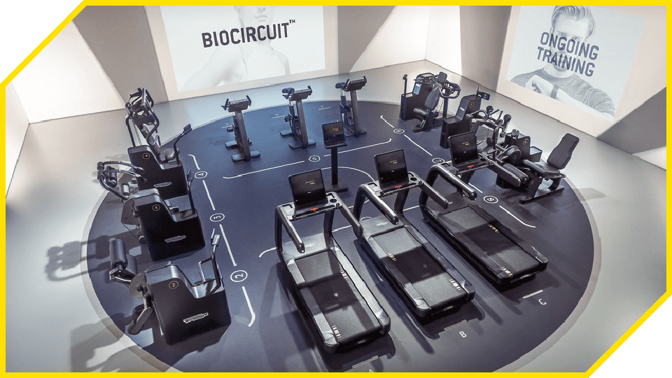 About|ACE1 fitness